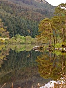 The shores and forested slopes around Loch Eck, reflected in the water, near Puck's Lodge. Sign up for special offers and news.